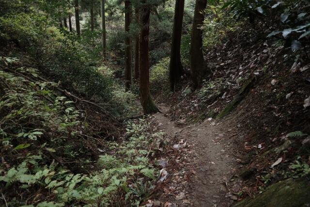 御岩神社 かびれ神社参道 パワースポット 登山