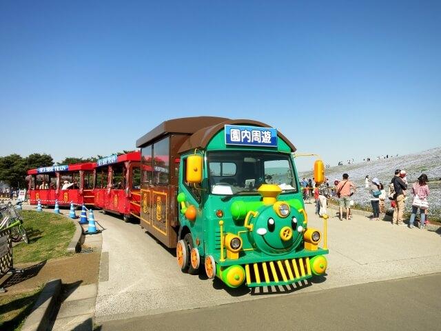 国営ひたち海浜公園 周遊バス シーサイドトレイン
