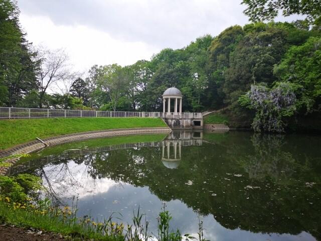 水戸 観光 七ツ洞公園