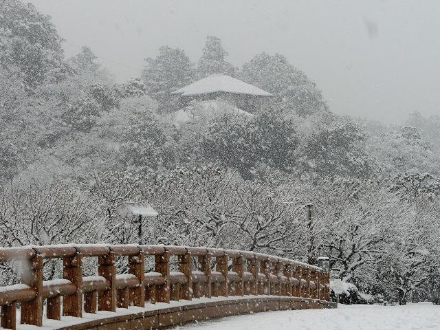 偕楽園 冬 雪