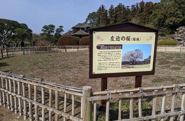 偕楽園 左近の桜跡地