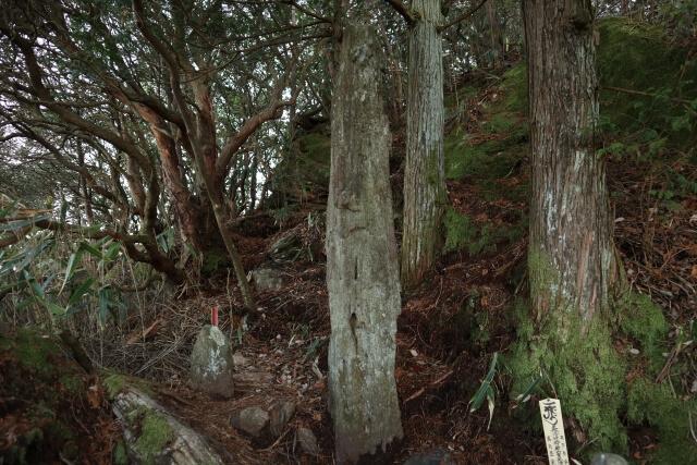 御岩神社 光の柱 不思議な言い伝え