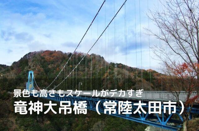 竜神大吊橋 紅葉 鯉のぼり バンジー