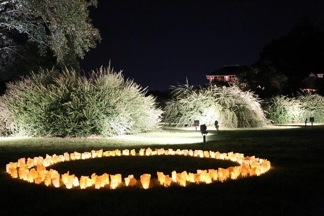 偕楽園 ライトアップ 9月 秋 萩まつり