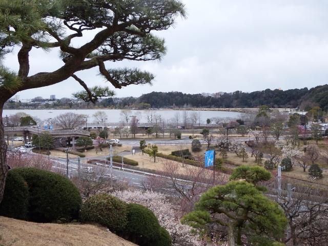 水戸 千波湖 イベント