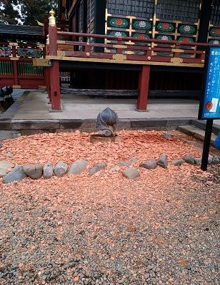 茨城 大杉神社 猫 お守り