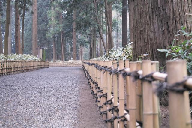 水戸市の偕楽園 歩き方 孟宗竹林 林道