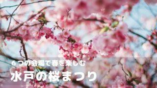 水戸 桜まつり
