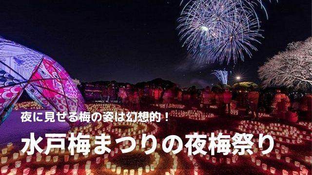 水戸 梅まつり 夜梅祭 ライトアップ