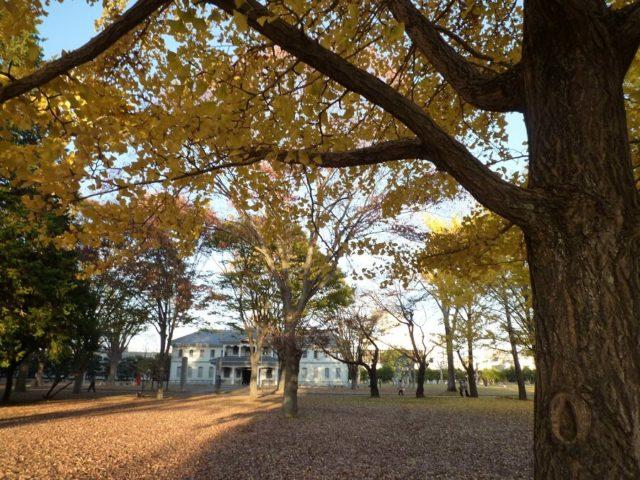 水戸駅の周辺 観光 旧水海道小学校