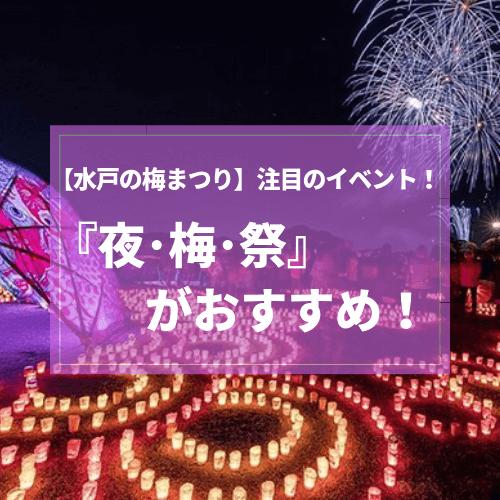 水戸 偕楽園 梅まつり 夜梅祭