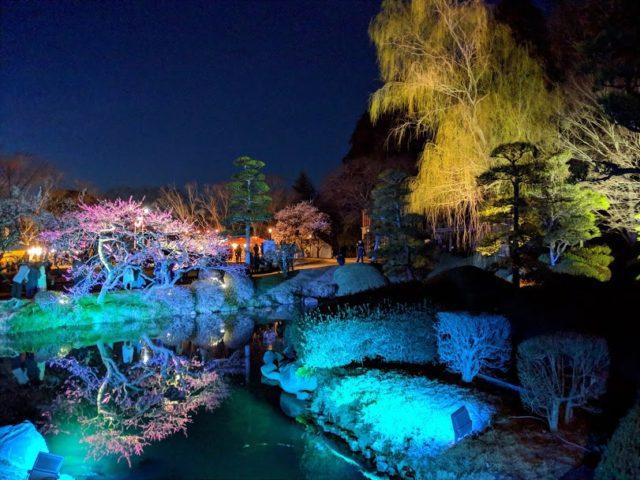 偕楽園 梅まつり 夜梅祭 ライトアップ