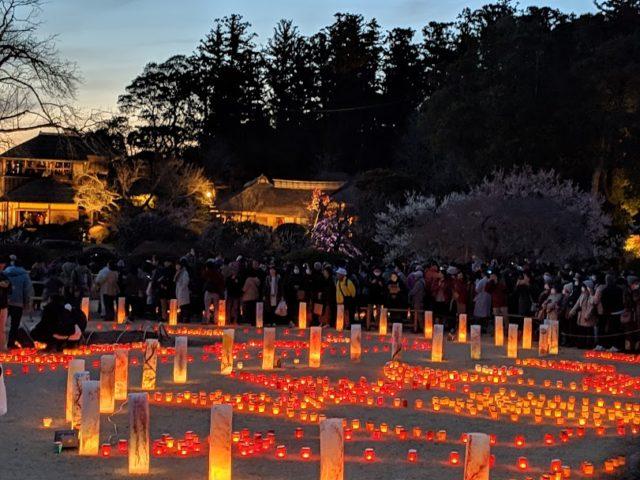 偕楽園 ライトアップ 梅まつり 夜梅祭