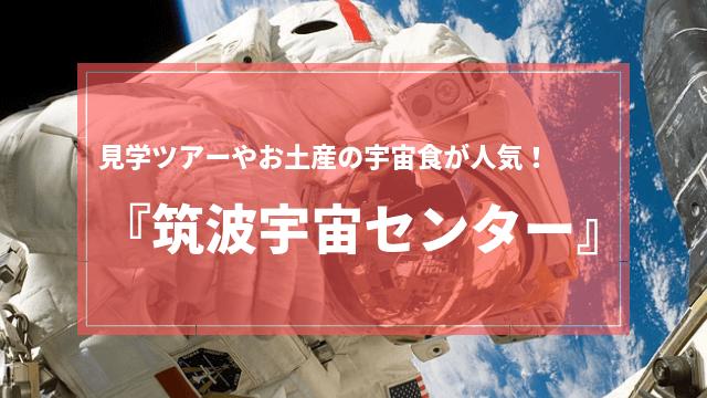 筑波宇宙センター 見学ツアー お土産