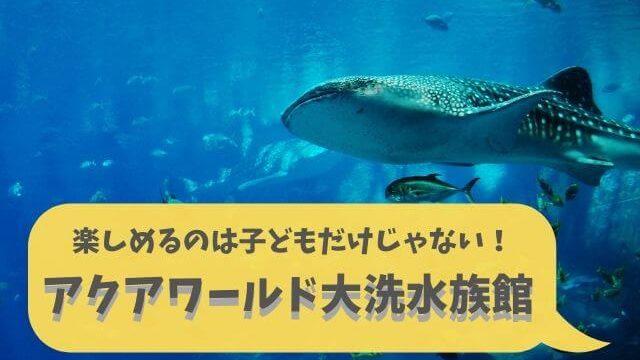 アクアワールド茨城県 大洗水族館 料金 ガイド