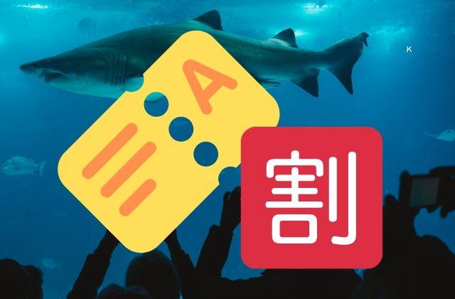 アクアワールド 大洗水族館 割引 クーポン 前売り券