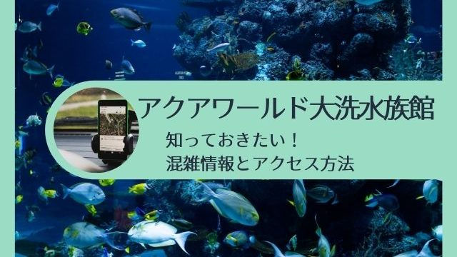 アクアワールド茨城県大洗水族館 混雑 時期 時間帯 アクセス方法