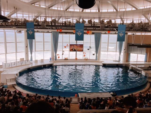 アクアワールド 大洗水族館 イルカ・アシカのオーシャンライブ