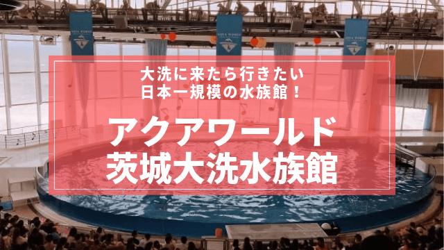 大洗水族館 おすすめ 口コミ 評判