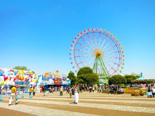 ひたち海浜公園 コキア 夏 見頃