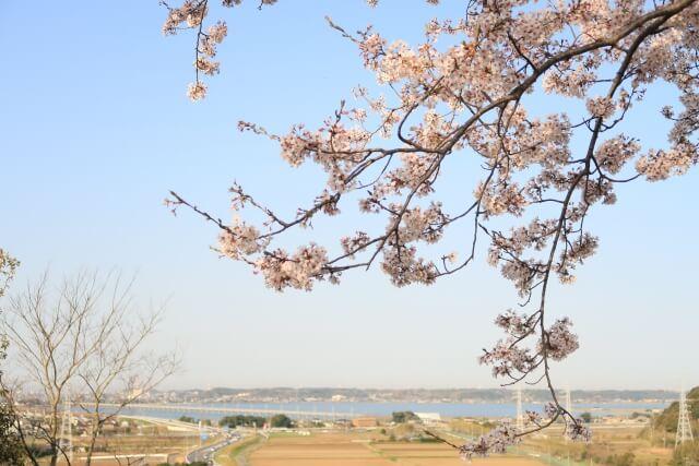 鹿島城山公園 眺望 北浦