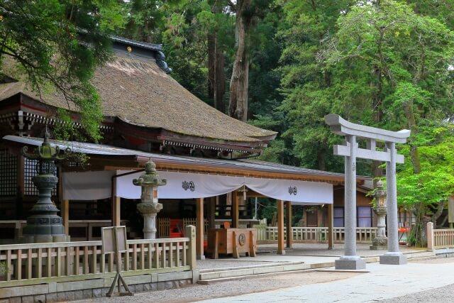 鹿島神宮 見どころ 拝殿