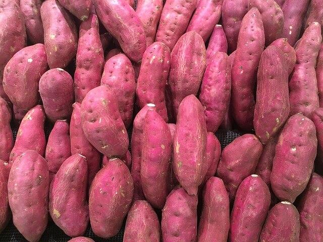 シルクスイート さつまいも 品種 茨城県 焼き芋