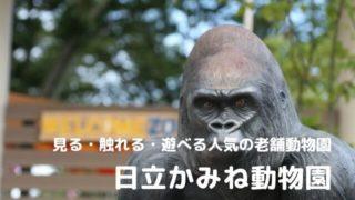 日立市 かみね動物園