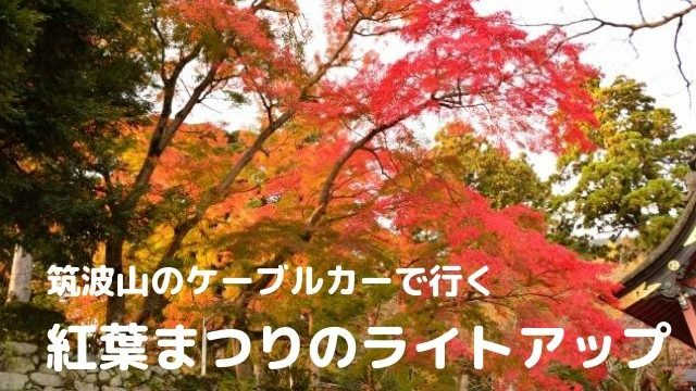 筑波山 紅葉 ライトアップ