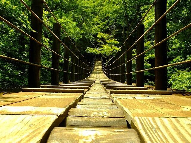 花貫渓谷 吊橋 紅葉 新緑
