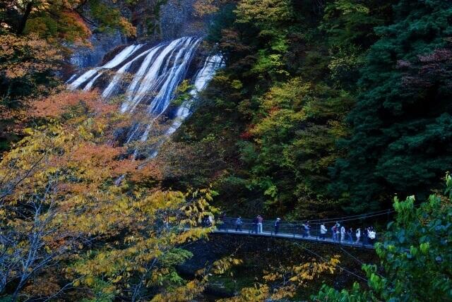 袋田の滝 吊橋 見どころ