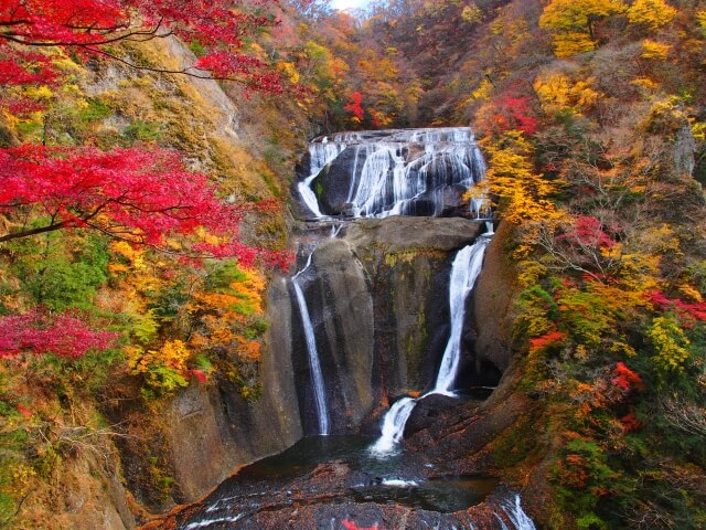 袋田の滝 紅葉 見頃 混雑