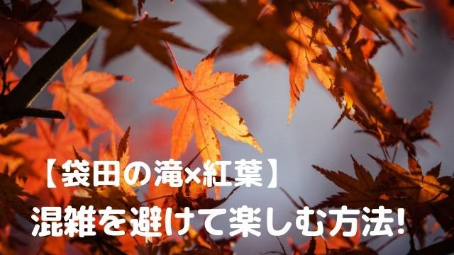 袋田の滝 紅葉 混雑