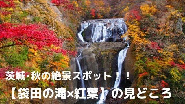 袋田の滝 紅葉 見頃