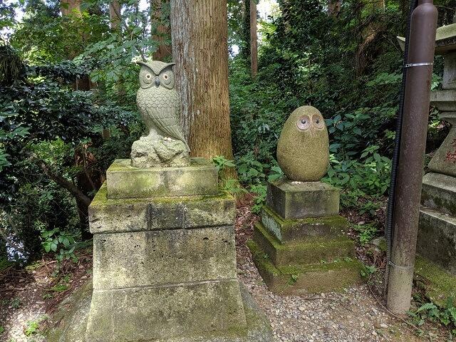 鷲子山上神社 福ふくろうロード フクロウ像