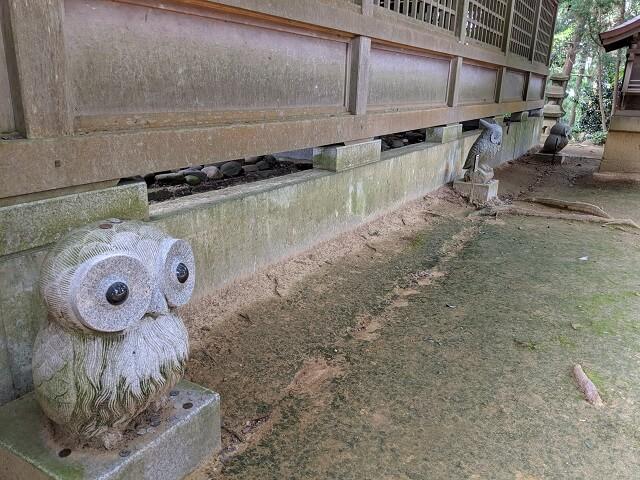 鷲子山上神社 御本殿 裏のフクロウ