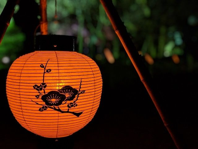 水戸梅まつり 弘道館 夜