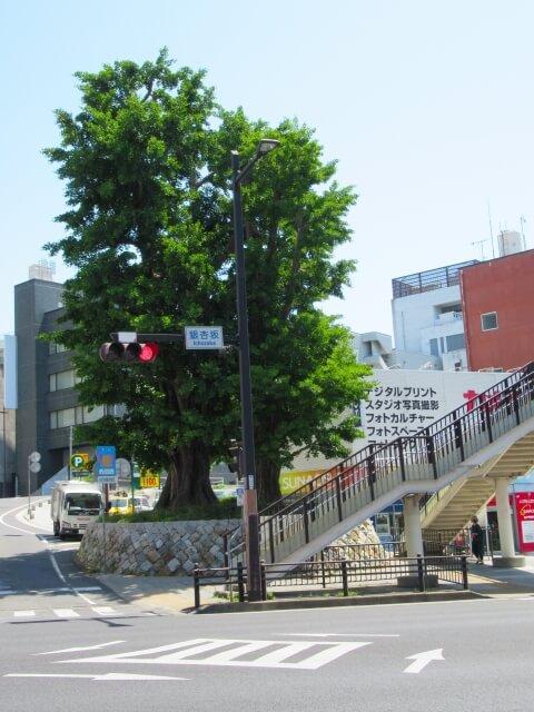 弘道館 水戸 駐車場 アクセス 駅前