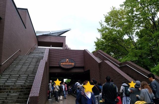 ミュージアムパーク茨城県自然博物館 クーポン 割引 無料の日 エントランス