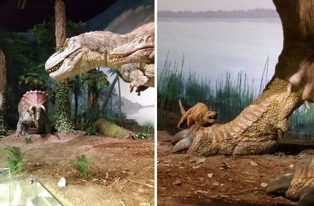 ミュージアムパーク茨城県自然博物館 クーポン 割引 恐竜エリア