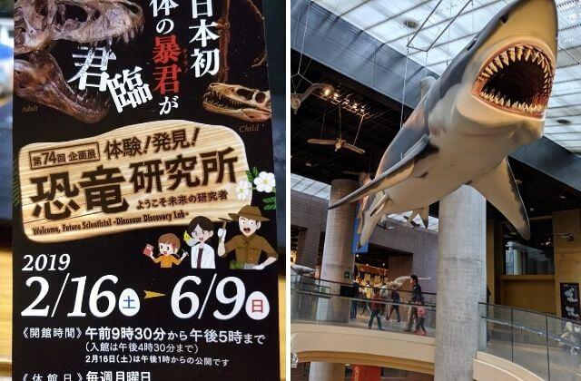 ミュージアムパーク茨城県自然博物館 クーポン 割引 企画展示 チケット
