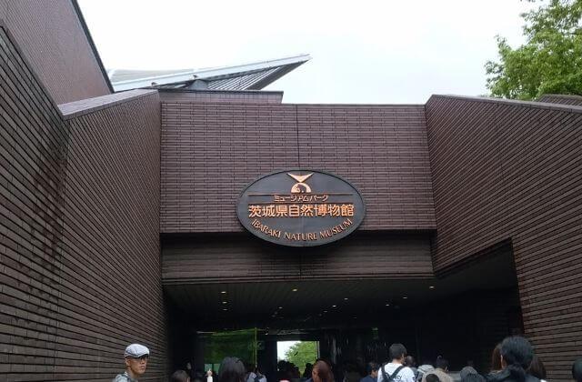 GW おでかけ 茨城 ミュージアムパーク茨城県自然博物館