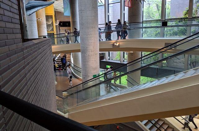 ミュージアムパーク茨城県自然博物館 館内