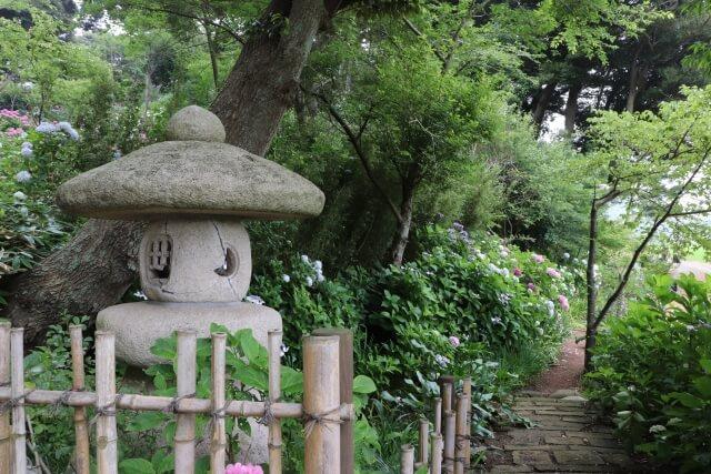 二本松寺 あじさいの杜 境内 散策路