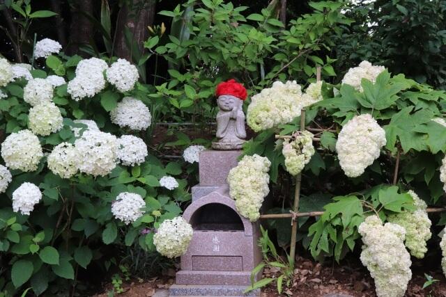 茨城県 神社 寺院 二本松寺 あじさいの杜 潮来市