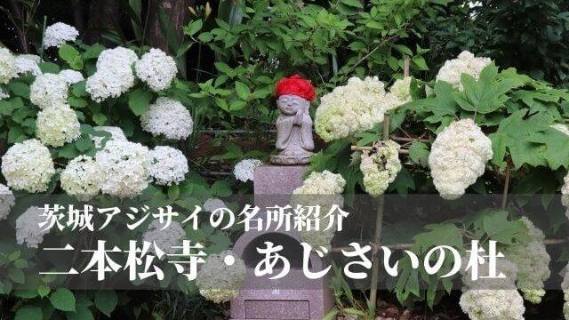 二本松寺 あじさいの杜