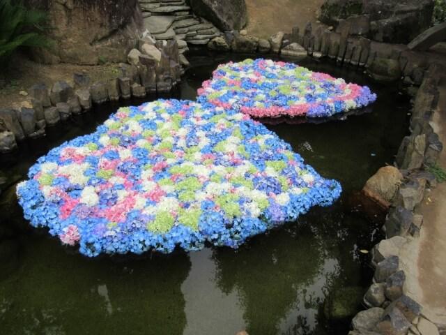 雨引観音 弁天池 あじさい ハート 池