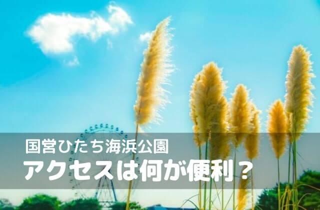 国営ひたち海浜公園 アクセス 東京から 車 電車 高速バス
