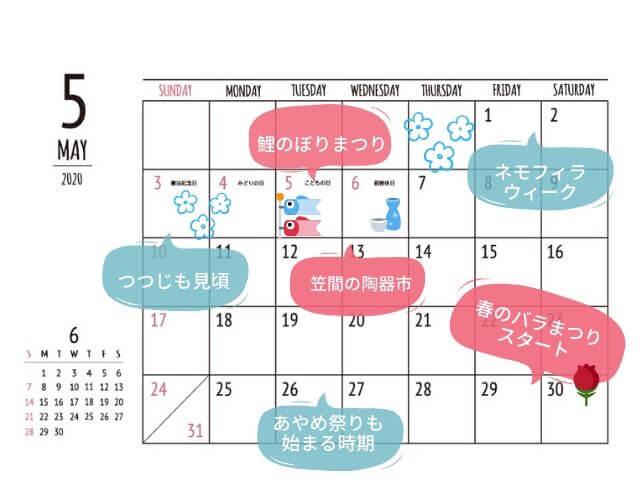 茨城 イベント 5月 行事