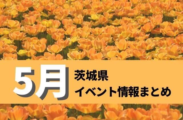 茨城 イベント 5月